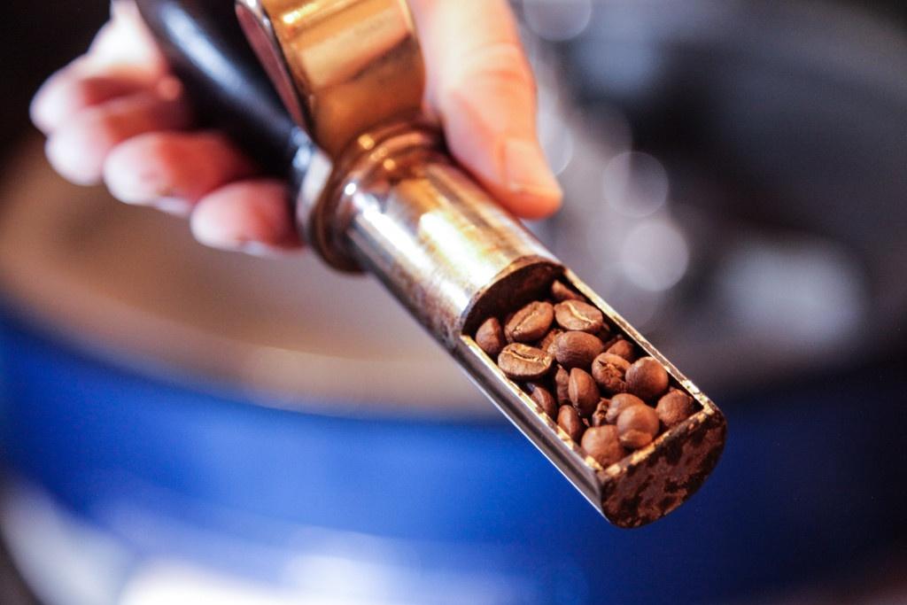 Kontrola průběhu pražení kávy