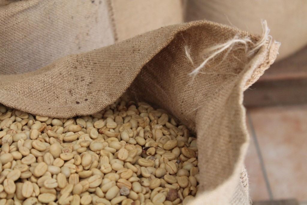 zrna zelené kávy v pytlích