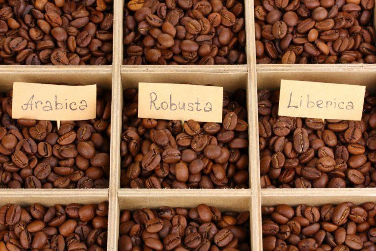 pražená káva arabica, robusta, liberica
