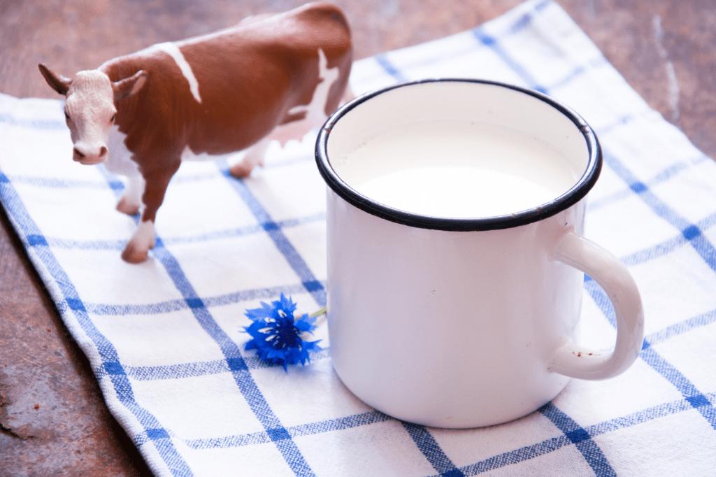 zažívací problémy a kravské mléko s laktózou