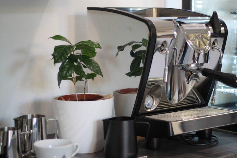 stříbrný domácí pákový kávovar Nuova Simonelli Musica