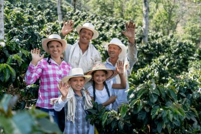 rodina farmářů na kávové plantáži v kolumbii