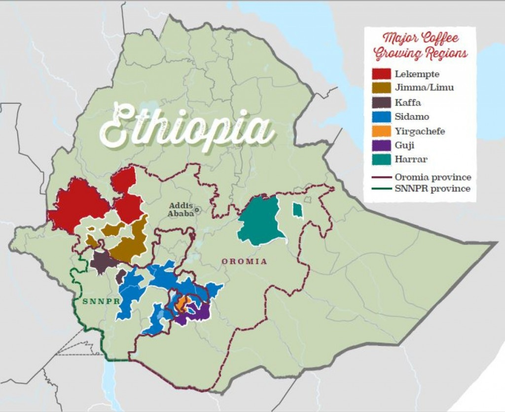 mapa oblastí a regionů produkujících kávu v Etiopii