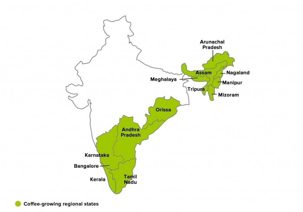 mapa oblastí a regionů podkce kávy v indii