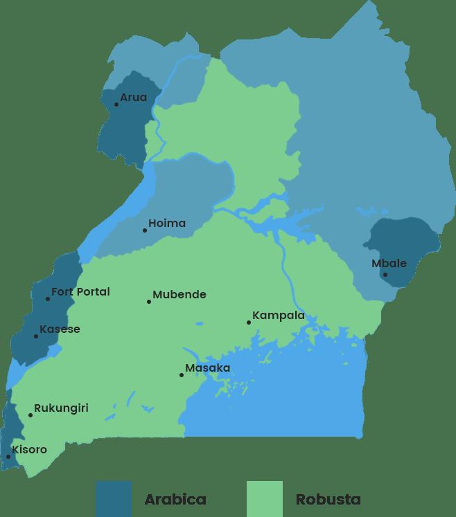 Mapa oblastí produkce kávy v ugandě