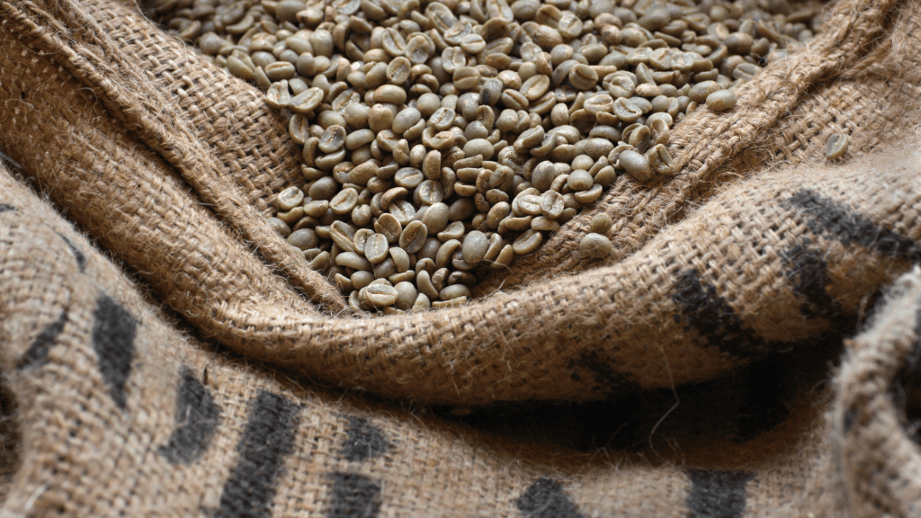 zrnka zelené kávy v pytli
