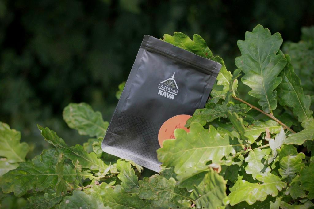 Země výběrové kávy: kde se pěstuje kávovník s nejlepší kávou na světě